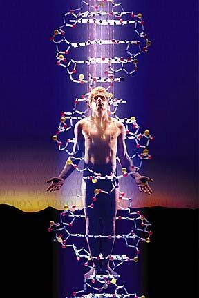 Energetska polje